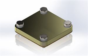 RIS-FLANGE2-BLANK (2in Blank Flange Assembly)
